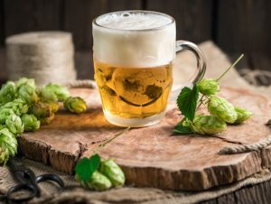 Hops-and-beer-1